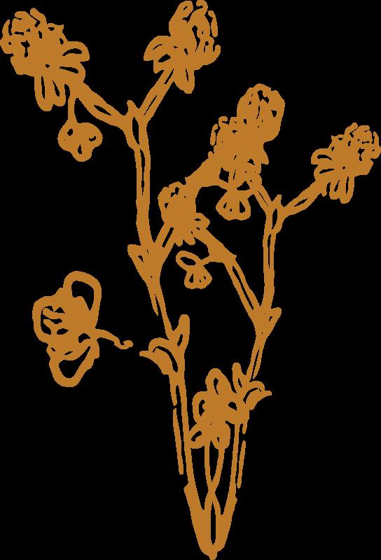 fff-logo_grass1-gold_2500px