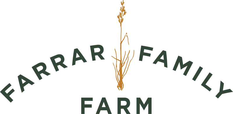 fff-logo_horizontal1-2c-green_2500px